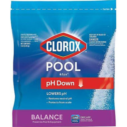 Picture of Clorox Pouch 450 grams